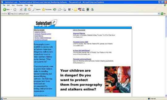 Google AdSense 经典书籍图 11